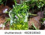 rosemary oil. rosemary... | Shutterstock . vector #482818060