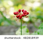 a close up of the most famous...   Shutterstock . vector #482818939