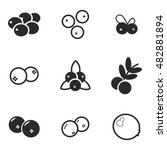 cranberry vector icons. simple...