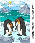 cartoon birds. two cute...   Shutterstock .eps vector #482936194