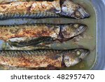 Grilled Mackerel Fishes As Nic...