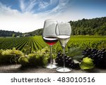 glasses with red wine and white ... | Shutterstock . vector #483010516