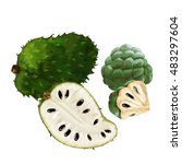 Sugar Apple  Custard Apple ...