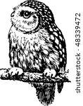 owl | Shutterstock .eps vector #48339472