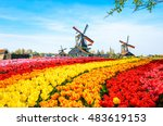 landscape with tulips ... | Shutterstock . vector #483619153