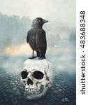 Black Raven On The Skull....