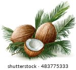 coconuts and half nuts on a...   Shutterstock .eps vector #483775333