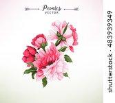 bouquet of peonies  watercolor  ...   Shutterstock .eps vector #483939349