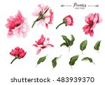flowers and leaves  watercolor  ... | Shutterstock .eps vector #483939370