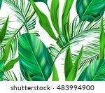 tropical palm leaves  jungle... | Shutterstock . vector #483994900