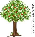 green apple tree full of red... | Shutterstock .eps vector #484242238