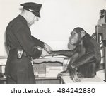 monkey fingerprinted by police... | Shutterstock . vector #484242880