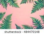 tropical summer background ... | Shutterstock . vector #484470148
