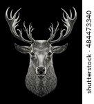 deer head. graphic illustration ... | Shutterstock . vector #484473340