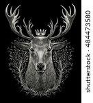 deer head. graphic illustration ... | Shutterstock . vector #484473580