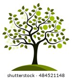 vector apple tree in two... | Shutterstock .eps vector #484521148