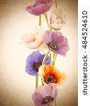 background flowers vintage... | Shutterstock . vector #484524610