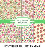 set of beautiful and colorful... | Shutterstock .eps vector #484581526