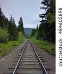 railroad tracks in the forest... | Shutterstock . vector #484602898
