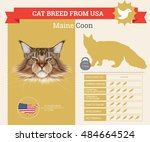 maine coon cat breed vector... | Shutterstock .eps vector #484664524