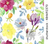 watercolor briar flowers... | Shutterstock . vector #484692370