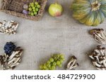 autumn time | Shutterstock . vector #484729900
