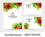 summer tropical hawaiian...   Shutterstock .eps vector #484745434