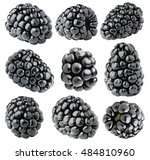 isolated blackberries.... | Shutterstock . vector #484810960