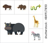 african animals icon set | Shutterstock .eps vector #484917850