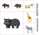 african animals icon set | Shutterstock .eps vector #484917850