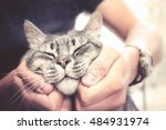 Stock photo cat in human hands pleased feline with vintage effect 484931974