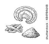 reishi mushroom vector... | Shutterstock .eps vector #484984648