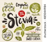 stevia and organic food label... | Shutterstock .eps vector #485044984