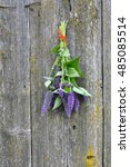 Small photo of Bunch of violet flowering anise hyssop (Agastache foeniculum) on old barn wooden wall