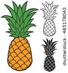 pineapple vector | Shutterstock .eps vector #485178043