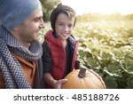 choosing perfect pumpkin on... | Shutterstock . vector #485188726