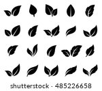 isolated abstract leaves icons... | Shutterstock .eps vector #485226658