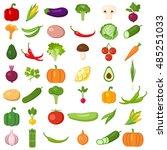 set of vegetables. different... | Shutterstock . vector #485251033