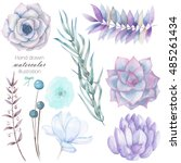 Set with the isolated watercolor floral elements: succulents, flowers, leaves and branches, hand drawn on a white background, for self-compilation of the bouquets and ornaments