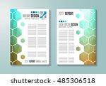 brochure template  flyer design ... | Shutterstock .eps vector #485306518