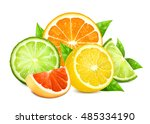 fresh citrus fruits with leaves.... | Shutterstock .eps vector #485334190