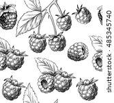 juicy raspberries. vector... | Shutterstock .eps vector #485345740