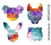 bright australian animal icons  ... | Shutterstock .eps vector #485369218