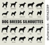 dog breeds vector silhouettes... | Shutterstock .eps vector #485462089