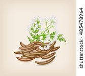 cumin seed with flowers and... | Shutterstock .eps vector #485478964