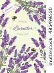 lavender flowers vertical... | Shutterstock .eps vector #485496520