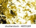 yellowed grunge | Shutterstock . vector #4855189