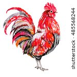 oil painting   cock with red... | Shutterstock . vector #485568244