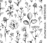 wild flowers drawings. seamless ... | Shutterstock . vector #485585038