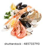 uncooked seafood  langoustine   ... | Shutterstock . vector #485733793